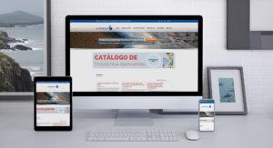 Diseño web PT Protecma